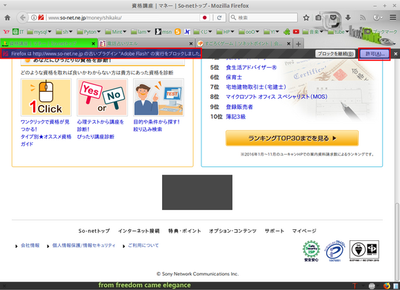 Mozilla Firefox_008.png