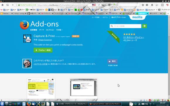 FirefoxCapturePrint4.png